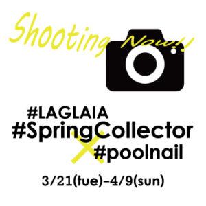 #SpringCollector